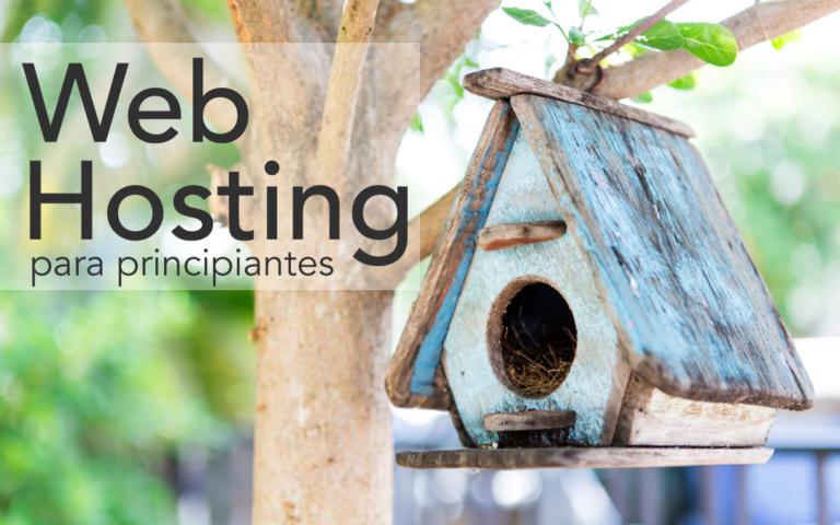 Web hosting para principiantes